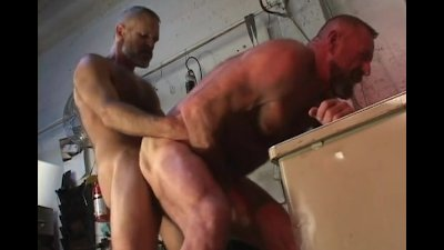 Hairy Bear Toolroom