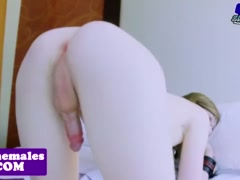 Chained tranny assfucked after anally toyed