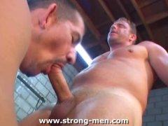 Men Sucking Cocks