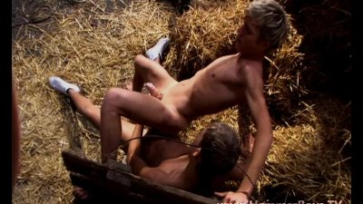 Hot gay holiday adventure in the strawy barn from Hammerboys TV