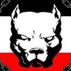 indiviniti's profile image