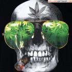 BIGGDADDYC's profile image