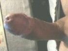 Maguila's profile image