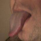 terrybear1's profile image