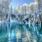 Winter_Solstice Avatar image